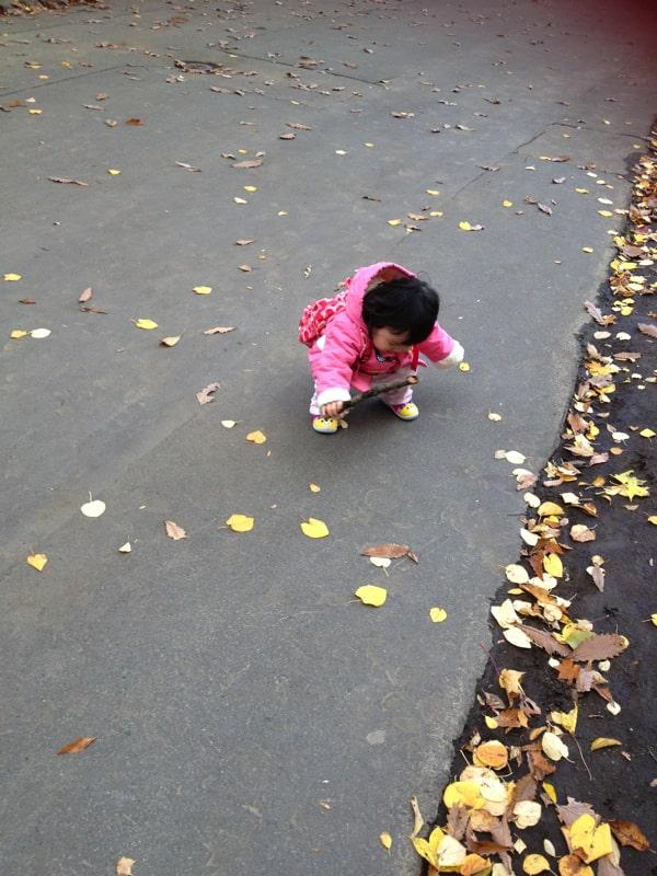 円山動物園で落ち葉を拾う子ども